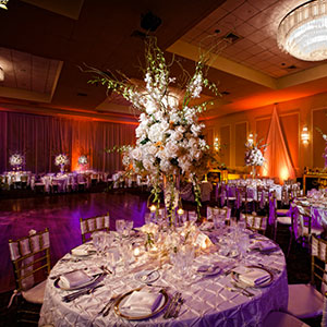 Dalsimer Spitz and Peck Floral and Event Decorators