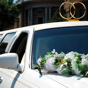 Carriage Limousine Service Incorporated