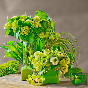 Verde Custom Flowers, Inc.