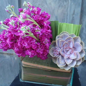 Volanni Floral Sculpture and Events