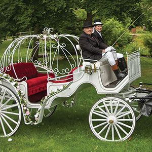 Remembrance Hill Carriages